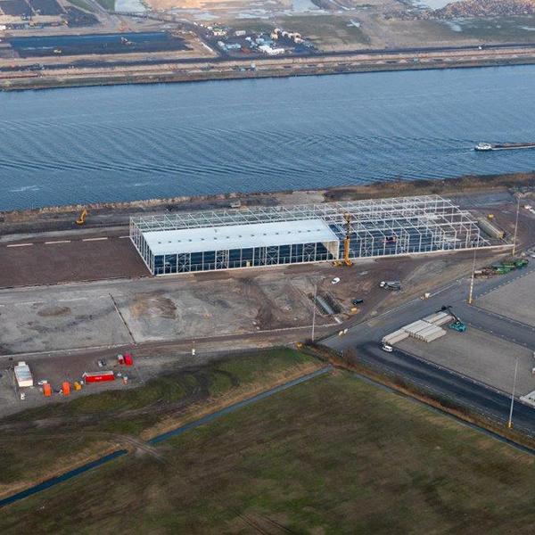 Falcon-terminal amsterdam